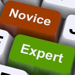 noivce vs expert